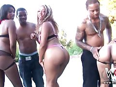 West Coast Bbc Orgy