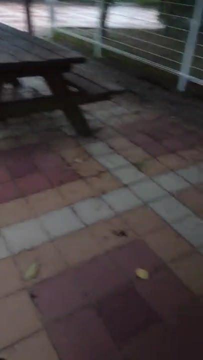 Подсмотренное видео анального секса на природе