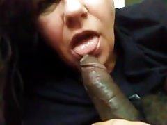 Mature BBW model sucking black dick