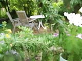 a naked dick in a garden scenery