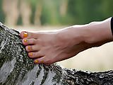 Feet 024 - Yellow Pedicure Closeup