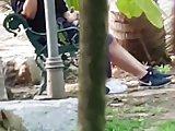 Hidden Camera Blowjob in Park