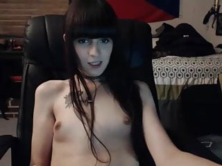 Pretty Kitty boobies