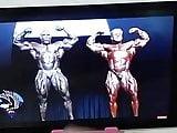 Jerking off watching bodybuilders