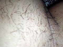 Cinciallegra e ascella pelosa mia moglie