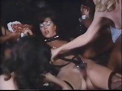 Der Samtrand (1976)