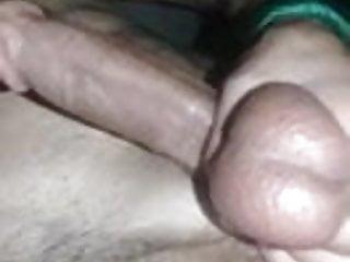 Turco huevudo lechoso