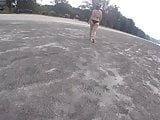 voyeur butt bikini walk on the beach