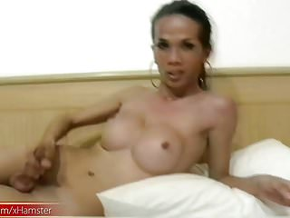 Ladyboys reveal big boobs and and cock...