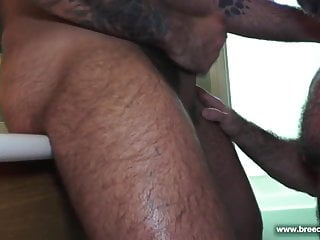 سکس گی Bishop Angus and Atlas Grant (MRB P3) muscle  hd videos gay sex (gay) gay bear (gay) gay anal (gay) daddy  couple  bear  anal