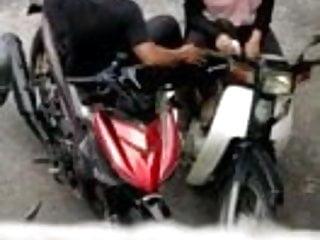 Melayu fingerling atas motor
