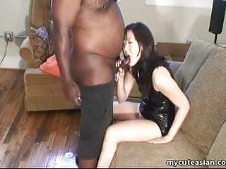 Fat black freak has his dick...