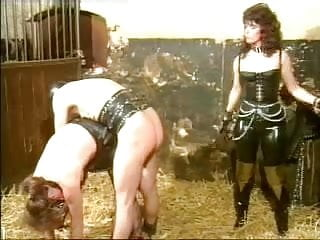 slaves education in the stable