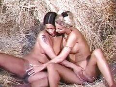 drncm classic lesbian 23